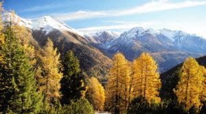 Tanzferien Goldener Herbst im Engadin